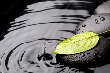 Green leaf with zen stones on wet background