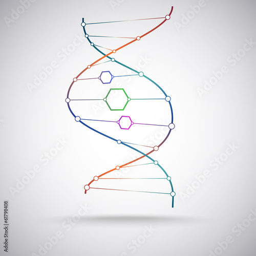 the DNA molecule color