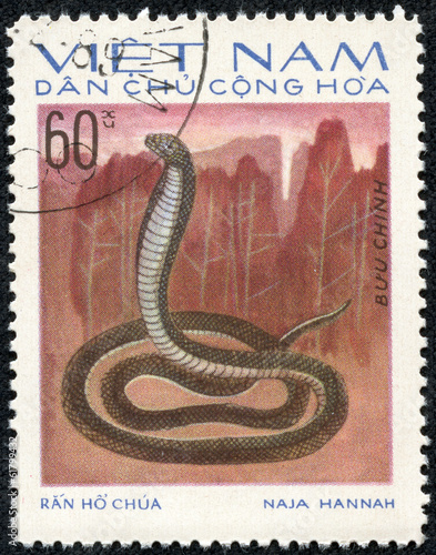 Poster stamp printed in VIETNAM shows a cobra