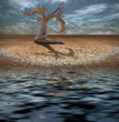 Desert Flood and tree