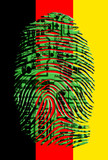 German flag circuit board fingerprint