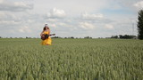 country woman with smile walk and play guitar in wheat field