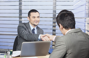 Young consultant shaking hands with his client