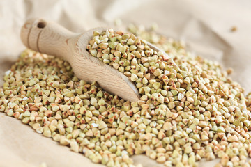 Buckwheat grains - grano saraceno