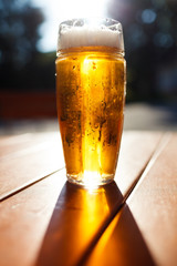 Glass of light beer, Background - blurred sunny forest.