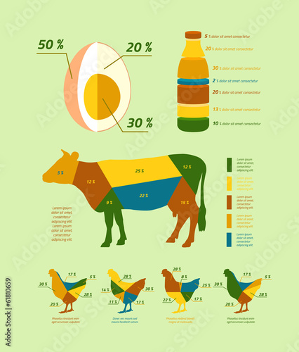 Natural farming infographics flat design elements