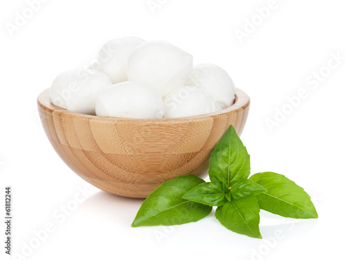 Mozzarella cheese with basil
