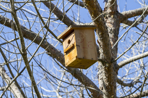Bird-box.Bird house on the tree  in the summer woods