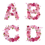 Spring alphabet with cherry flowers ABCD