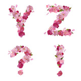 Spring alphabet with cherry flowers YZ and signs
