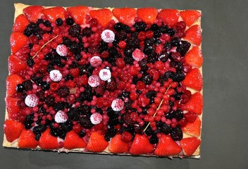 rectangle aux fruits rouge