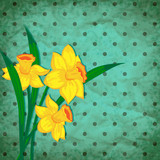 Vector retro background with narcissus