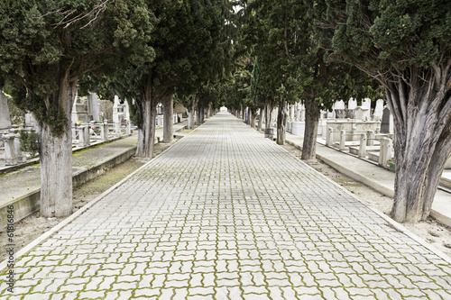 Road with depth in a cemetery