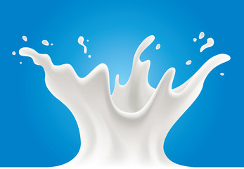 cows, sheeps, goats, soya milk splash on blue background