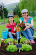 Gardening, planting - family in vegetable garden