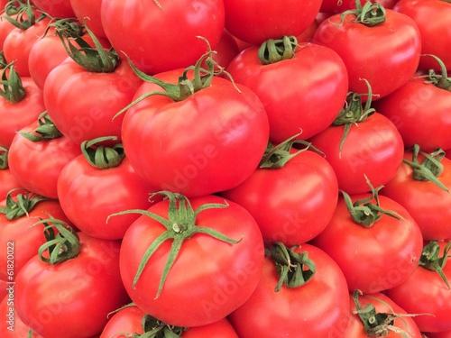 Fresh Market Tomatoes