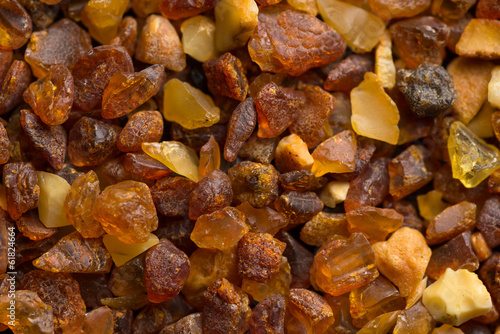 Amber stones from the beach of the Baltic Sea