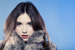 Fashionable girl. Young woman in fur coat on blue.