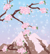 Season sakura mount Fuji background