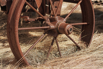 Wagon Wheel in Straw