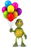 Fototapety Turtle