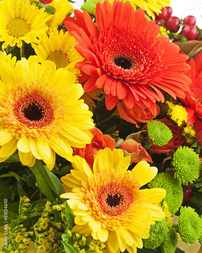 Gerbera flowers isolated on white background.
