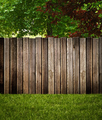 Garden Fence on Trees