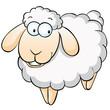 Lächelndes Schaf