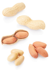 Dried peanuts collection on white background, clipping path