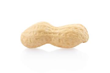 Single peanut on white, clipping path