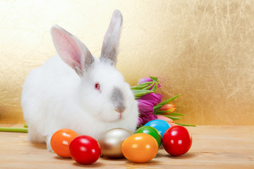 Easter rabbit with colorful eggs