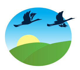 birds flying over the green fields - vector illustration