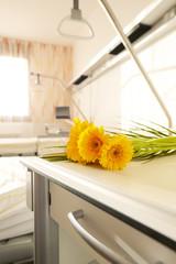 Blumen Krankenhaus Nachttisch