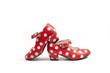 Obrazy na płótnie, fototapety, zdjęcia, fotoobrazy drukowane : two flamenco shoes.