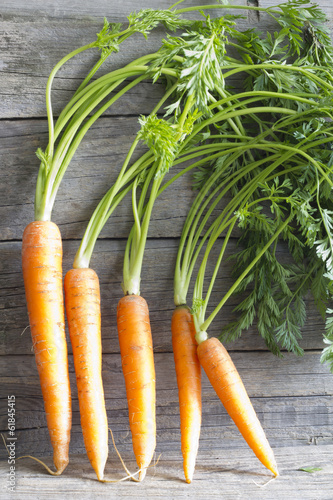 Fresh organic carrots on wooden boards