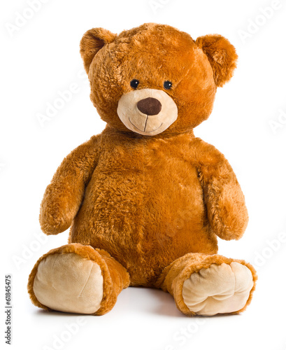 teddy bear - 61845475
