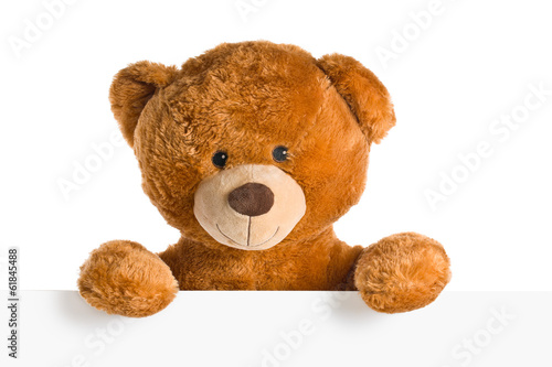 teddy bear behind whiteboard - 61845488