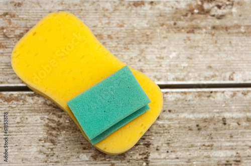 Different Shaped Sponges