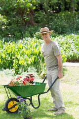 Mappy male gardening with wheelbarrow at garden