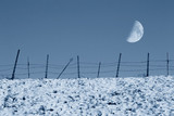 enclosure in winter with moon in the sky poster