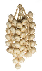 bunch of garlic on a white background