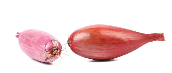 Close up of two red onions.