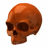 Illustration of orange skull
