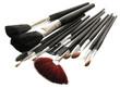 Set of make-up brushes isolated on white