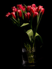 Red tulips in the vase