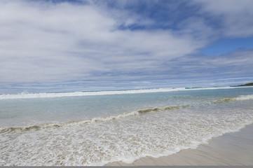 mare delle galapagos