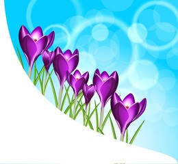Весенние баннеры, 8 марта