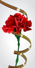 Красная гвоздика с георгиевской лентой