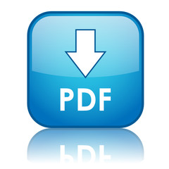 """DOWNLOAD PDF"" Web Button (internet search save document format)"