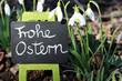 Schneeglöcken/Frohe Ostern-Tafel